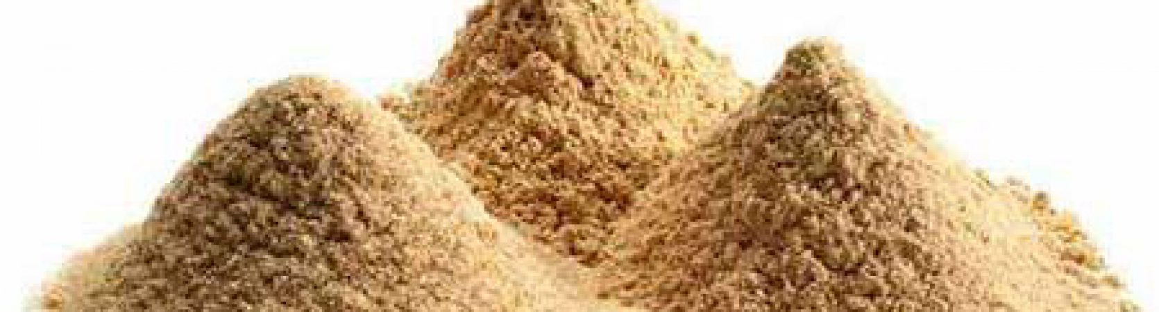 combustible dust EAD